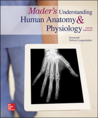 Solution Manual for Mader's Understanding Human Anatomy & Physiology 9th Edition Longenbaker