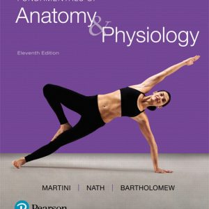 Solution Manual for Fundamentals of Anatomy and Physiology 11th Edition Martini