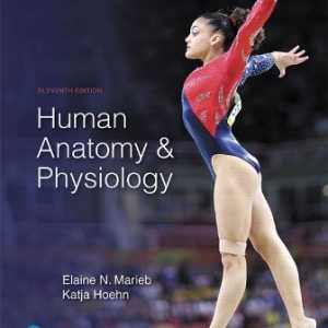 Test Bank for Human Anatomy and Physiology 11th Edition Marieb